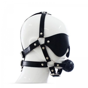 Total Head Harness Restraint