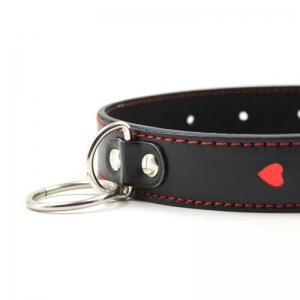 Easy Collar Leash