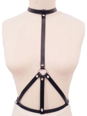 Collar with waist harness-2002555