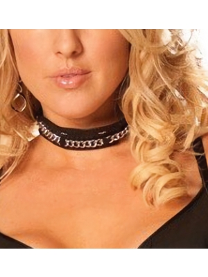Collar with silver chain-2002058